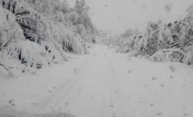Повеќе села во Кичевско неколку дена без струја