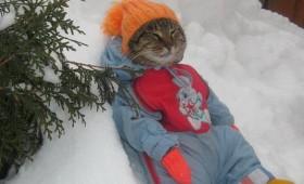 Иде зима!