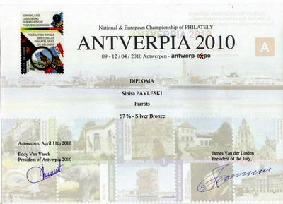 Antverpia-Parrots-s