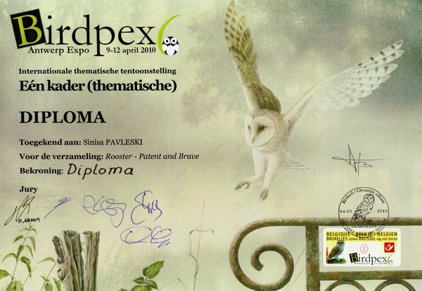 DiplomaBirdpex-s