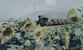 """Документарен филм со возот """"Ќиро"""" од 1972 година (видео)"""