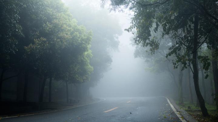pat magla