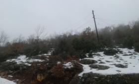 Населението од Лавчани 2 недели без струја