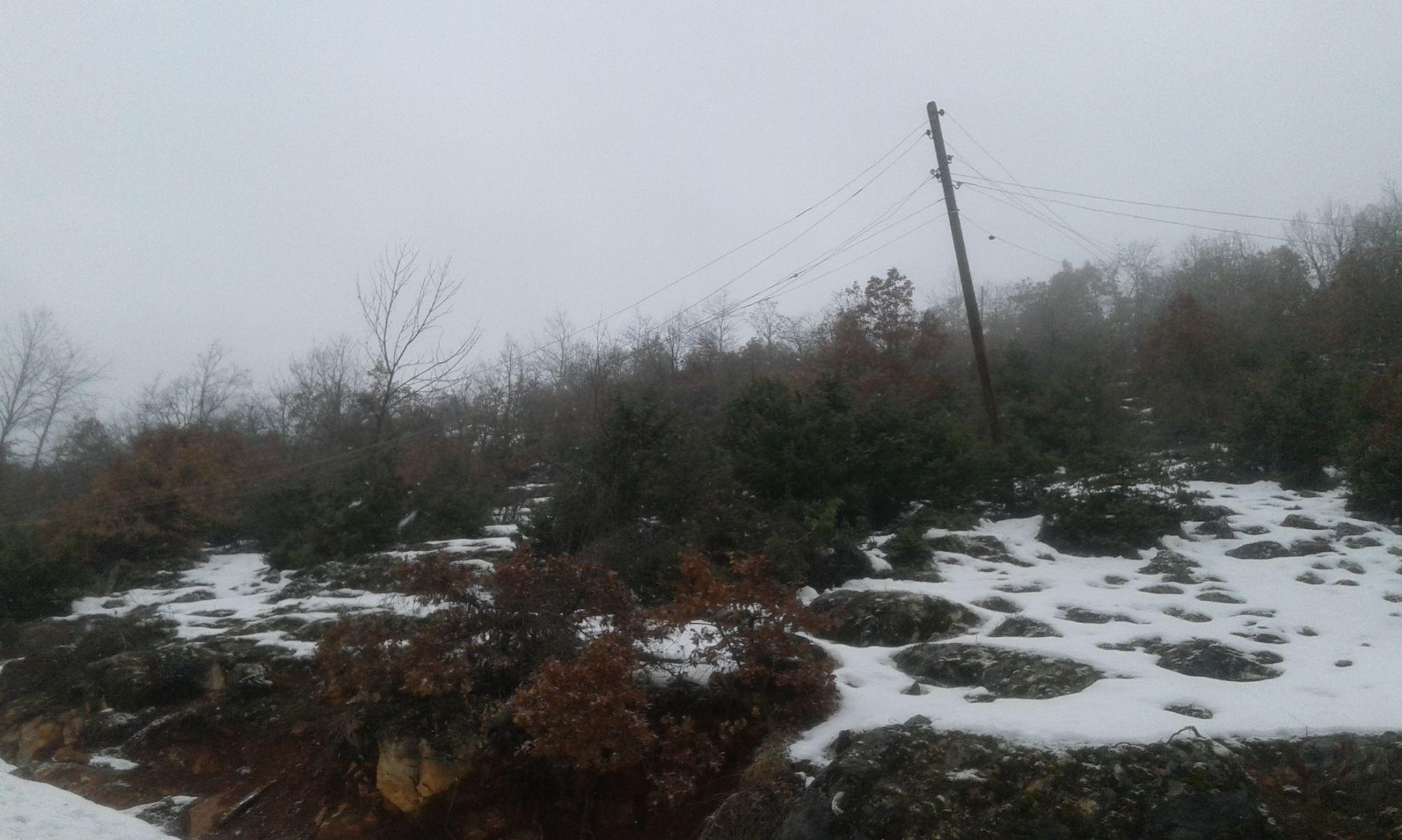 Lavcani padnati stolbovi (2)