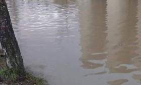 Езеро кај млинот, не одете без чамец (фото)
