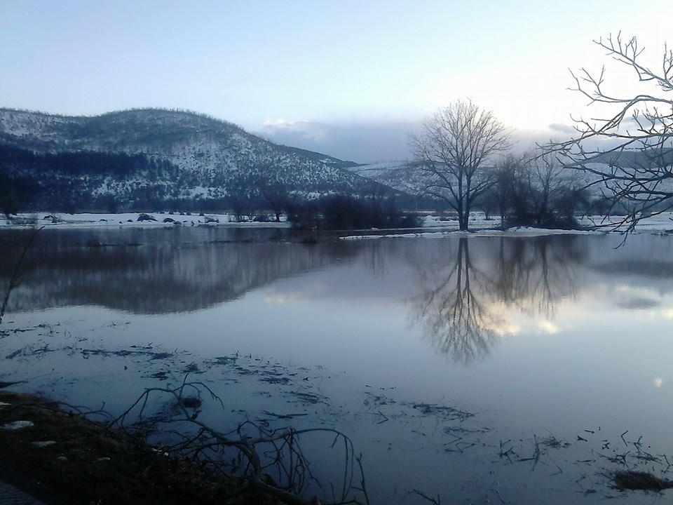 Treska vo Srbjani (5)