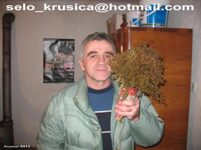 krusica-5